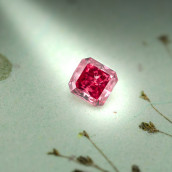 Argyle Coin with Red Diamond | Leibish