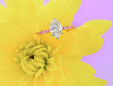 Pink Diamonds vs. White Diamonds - Pink Diamond Value | Leibish