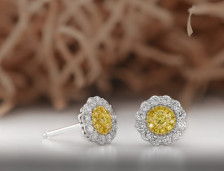 Yellow Diamond Earrings | Leibish