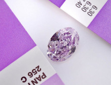 The Purple Orchid Diamond | Leibish
