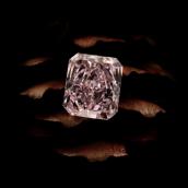 The Future Sparkles Bright with Argyle Diamonds | Leibish