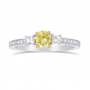 Fancy Yellow Round & White Princess Diamond Ring, SKU 199209 (0.80Ct TW)