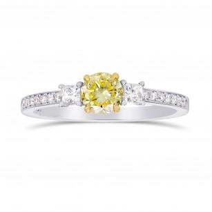 Fancy Yellow Round & White Princess Diamond Ring, SKU 199209 (0.80Ct TW)