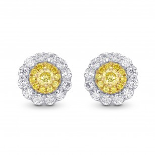 Round Brilliant Yellow Diamond Halo Earrings, SKU 28831R (0.62Ct TW)