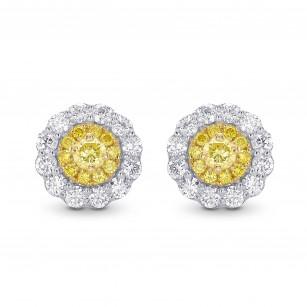 Round Brilliant Yellow Diamond Halo Earrings, 商品编号 28831R (0.62克拉)