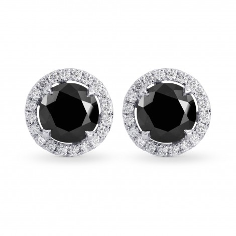 Fancy Black Round Brilliant Diamond Halo Earrings, SKU 223019 (2.85Ct TW)