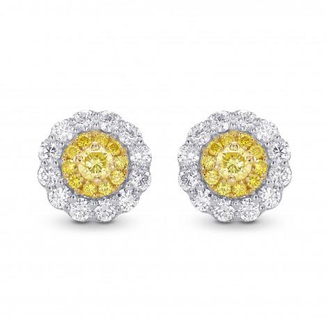 Round Brilliant Yellow Diamond Halo Earrings, SKU 28831R (0.62Ct TW)