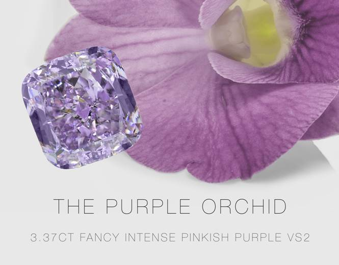 The 3.37ct Purple Orchid